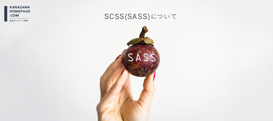 2018年SASSについて考える